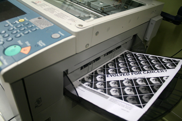 Things left in the photocopier