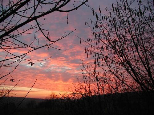 20040305_sunset4