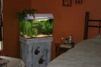 Bedroom aquarium | Flickr - Photo Sharing!