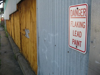 Lead danger