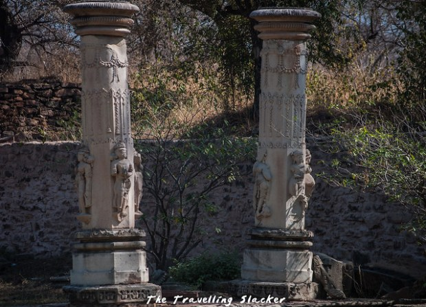 Badoli Temples (36)