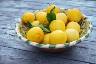Gaucin: lemons form the garden
