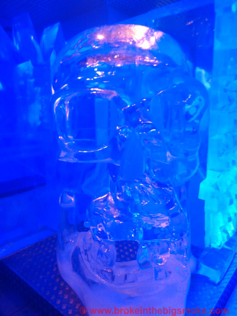 Bloggers Below Zero Ice Bar London Skull
