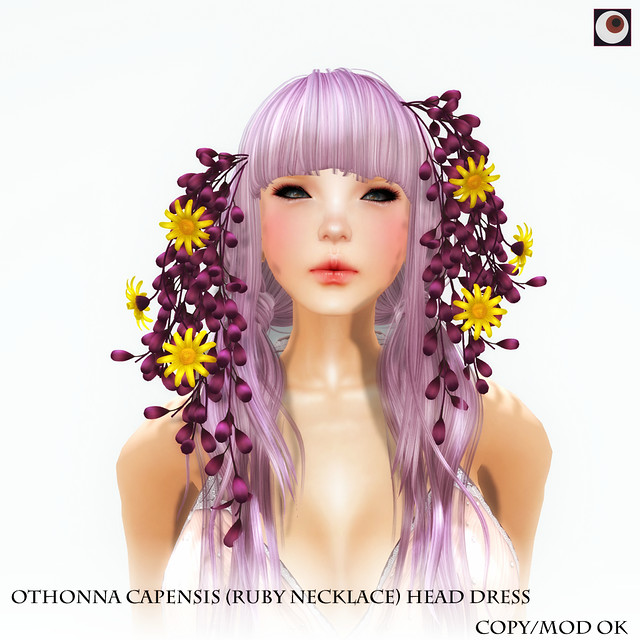 *NAMINOKE*Othonna capensis (Ruby Necklace)Headdress