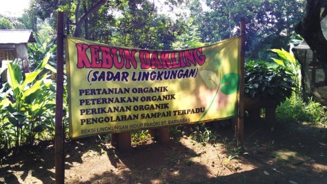 Welcome to Kebun Darling