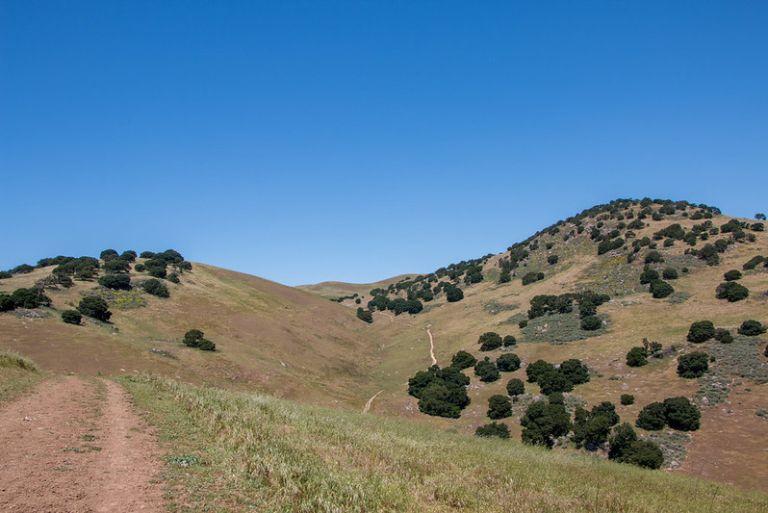 05.01. Brushy Peak Regional Park