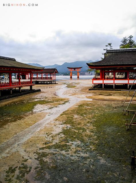 Torii desde Itsukushima con la marea baja
