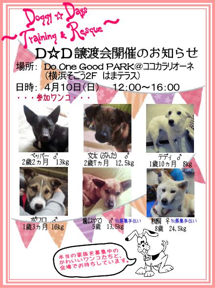 20160410_satooyakai_dd