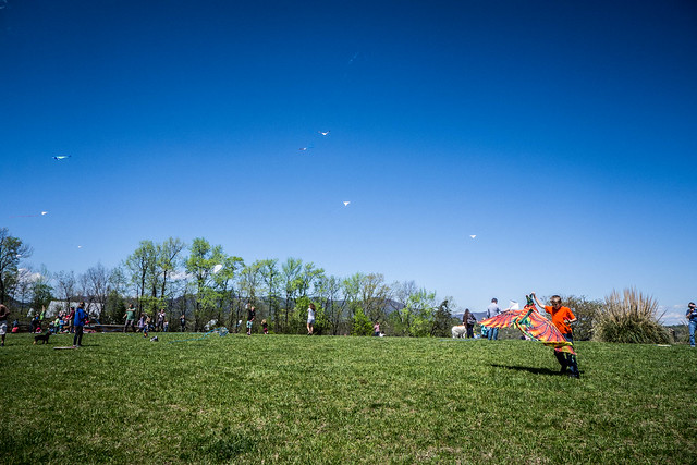 FENCE Kite Festival-006
