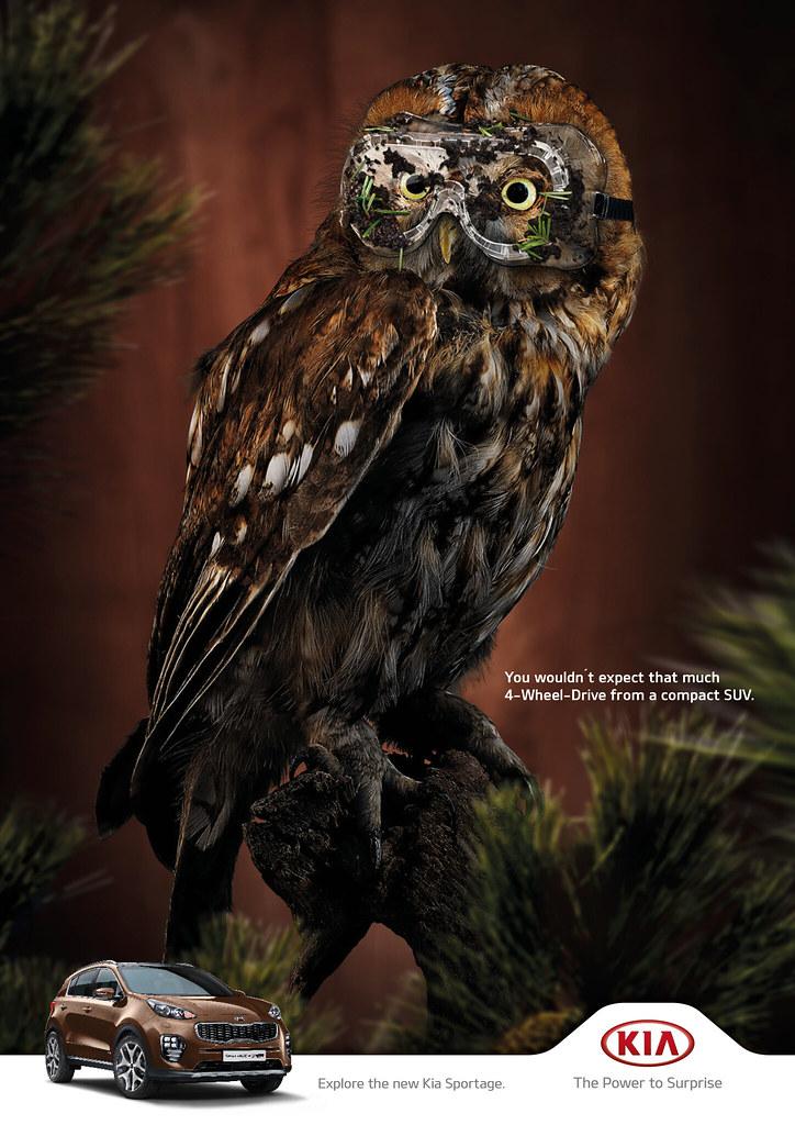 KIA - Owl