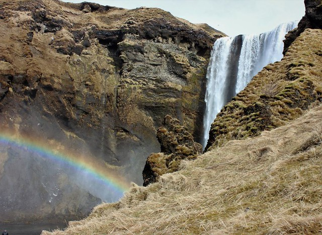 Iceland P4P