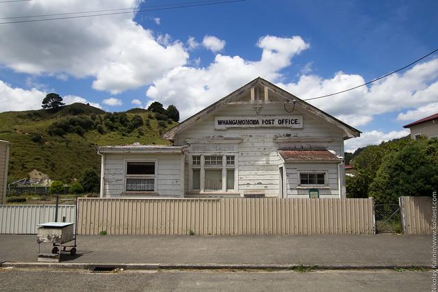 NZ_12-39