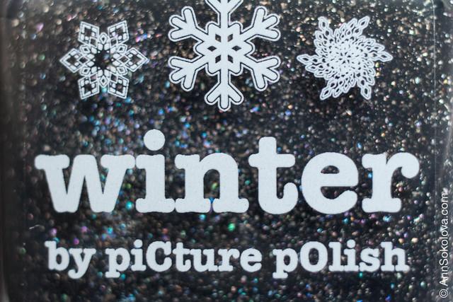 07 Picture Polish Winter Ann Sokolova swatches