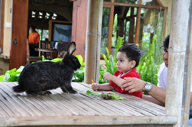 Eco tourism with children in Bali