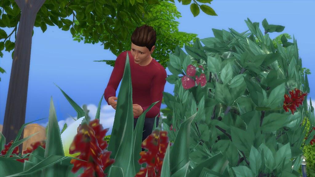 The Sims 4  Guida allabilit di giardinaggio  Lista