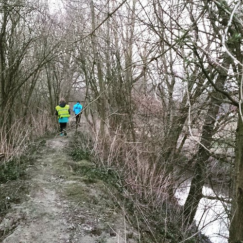 This week, we went running with Liv and we discovered a new part of our small village. Quite adventurous trail ... our nature girl was fortunate #elewijt #vredesbos #runhappy #instarunner #nevernotrunning #run #instarunners #iloverunning