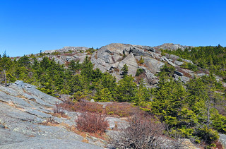 White Dot Trail Above Treeline
