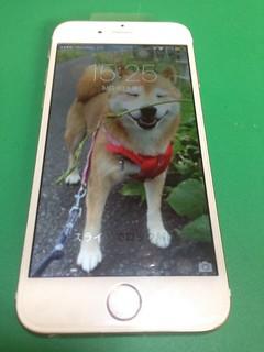 61_iPhone6のフロントパネルガラス割れ