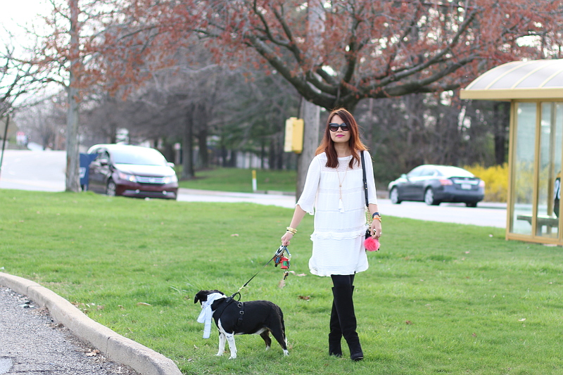 who what wear, target, white dress, tall suede boots, beagle dog Louis