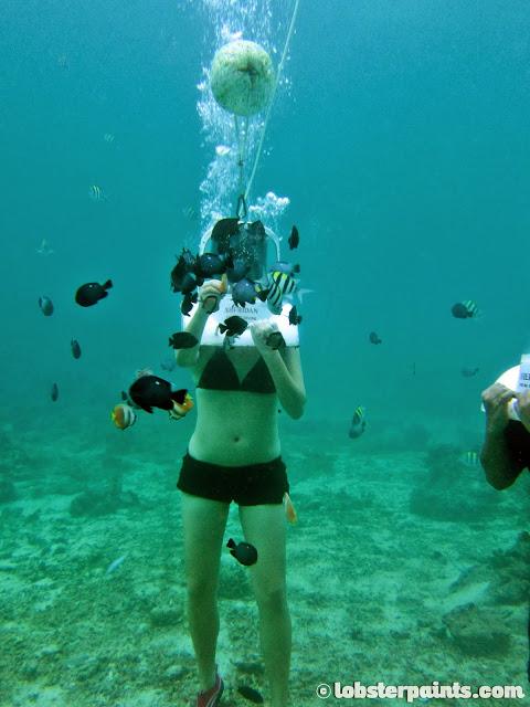 Boracay November 2013 - Helmet Diving