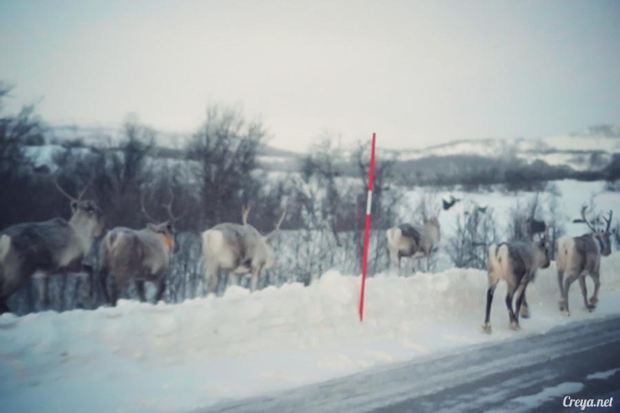 2016.02.23| 看我歐行腿 | 阿呀~一不小心就從瑞典到了挪威, Narvik 小鎮遇見地理課本中的峽灣 08.jpg