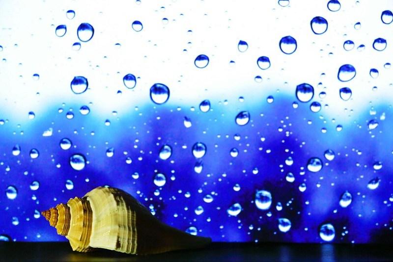 滴滴答答的旋律(raining music)
