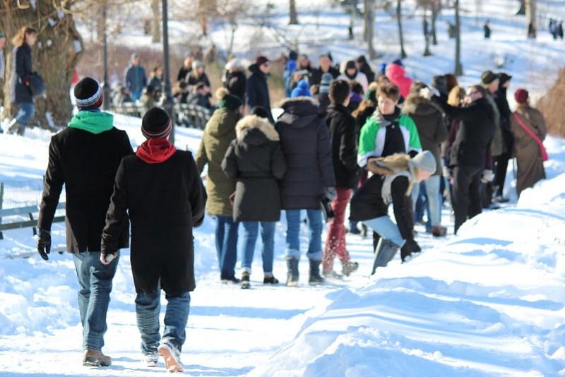 Central Park After Snow Storm