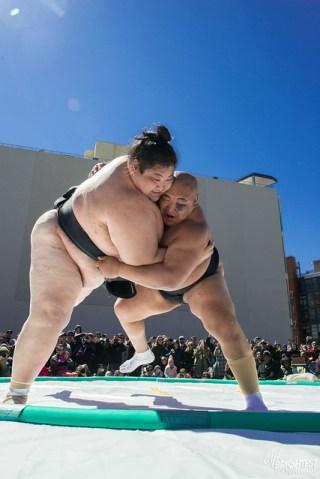 040316_Sumo Wrestlers_230
