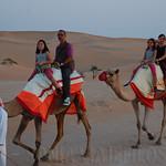 Viajefilos en el desierto de Abu Dhabi 12