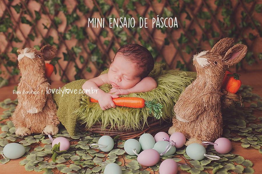 danibonifacio-lovelylove-ensaio-book-miniensaiodepascoa-temapascoa-pascoa-bebe-acompanhamentodebebe-newborn-recemnascido-infantil-bookfotografico