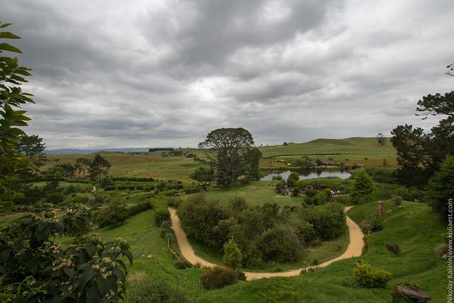 NZ_14-53