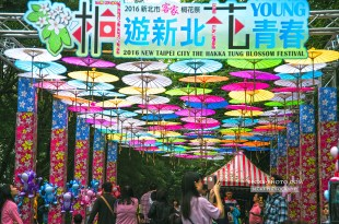 【台北】。2016新北市土城桐花祭 南天母廣場賞桐花況!