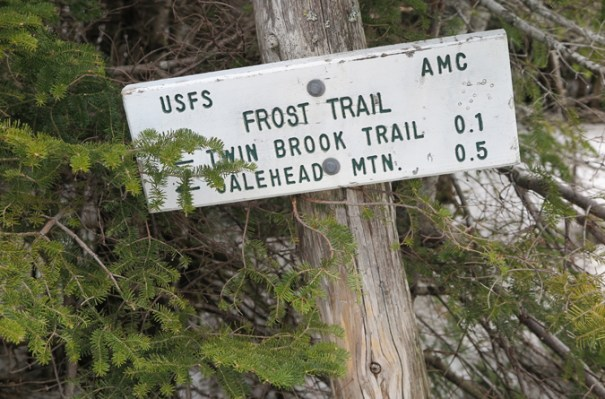 Frost Trail