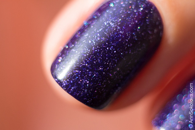 08 Picture Polish Muse Ann Sokolova swatches
