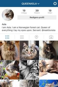 Instagram queenasla