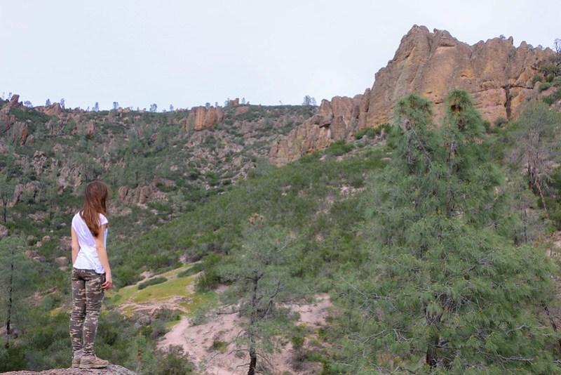 02.28. Pinnacles National Park