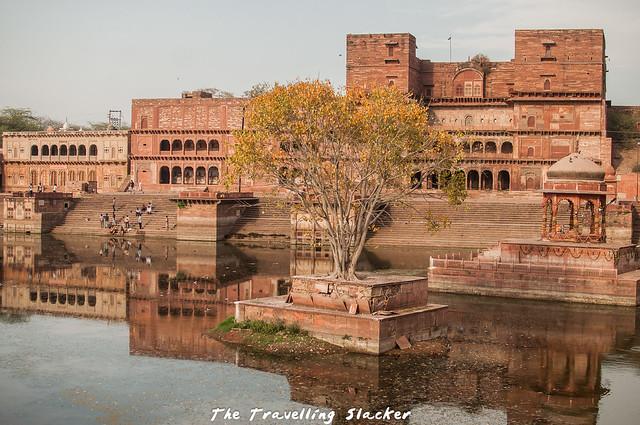 Dholpur (9)