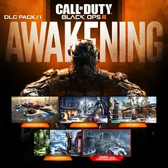 Call Of Duty: Black Ops III: Awakening
