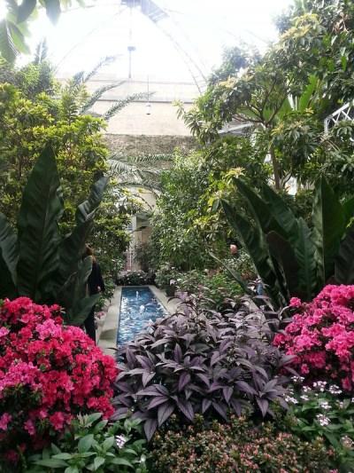 20130307_155732 United States Botanical Garden Conservatory