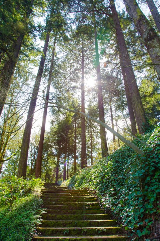 Washington Park Stairs