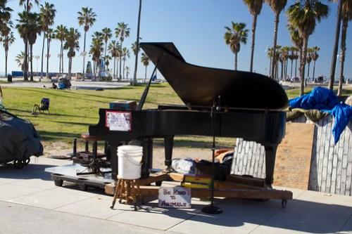 22 Venice Beach 12