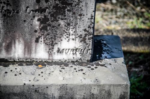 Ebenezer Methodist Church and Cemetery-035