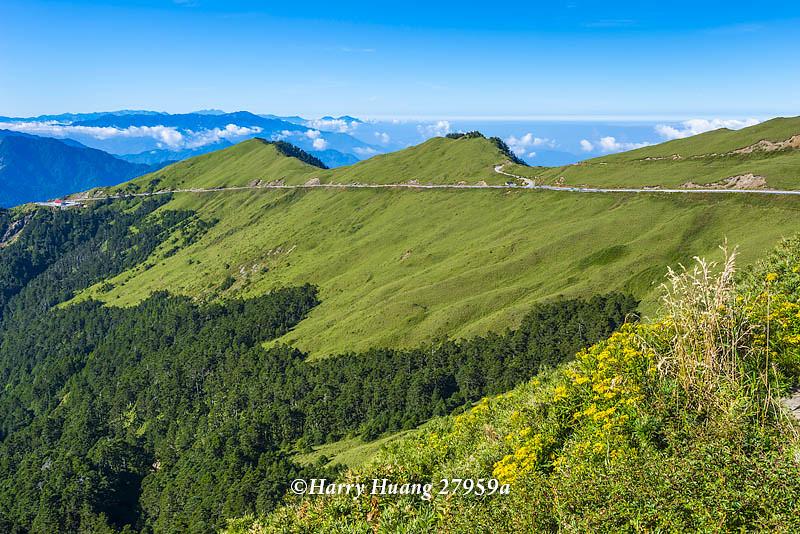 Harry_27959a,武嶺,眺望合歡山脈,合歡山,合歡主峰,合歡主峰登山口,合歡主峰步道,登山步道,一枝黃,一枝… | Flickr