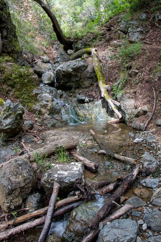 04.24. Sunol Wilderness