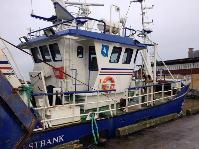 fiskhamnen_5feb_2015 - 11