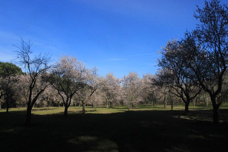 Quinta de Molinos