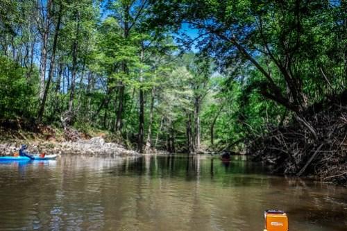 Turkey and Stevens Creeks-48