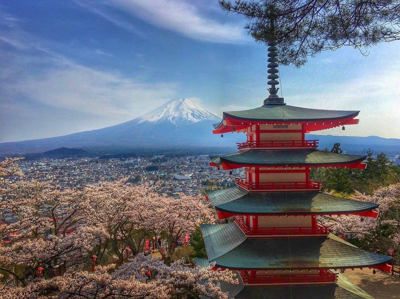 Chureito Pagoda Sakura cherry blossoms
