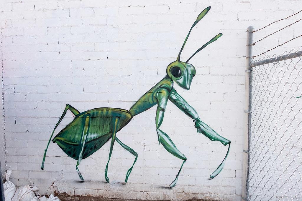 Street Art Phoenix