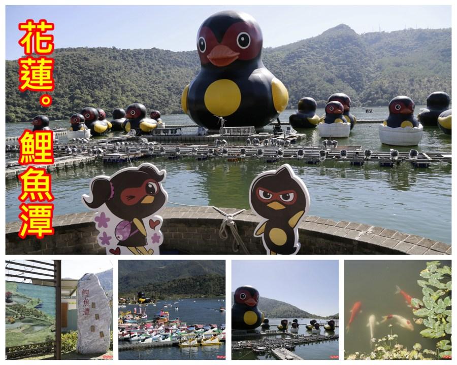 2016花蓮太平洋燈會,水舞,燈會,紅面鴨,花蓮,花蓮旅遊,鯉魚潭 @VIVIYU小世界